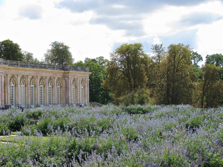 Versailles (38) copy
